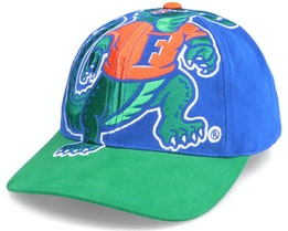 U. Of Florida Ncaa Big Logo Deadstock Royal/Green Adjustable - Mitchell & Ness