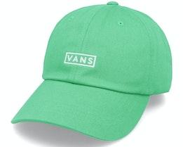 Curved Bill Jockey Porcelain Green Dad Cap - Vans