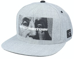 Wl Watch It Grow Heather Grey Snapback - Cayler & Sons