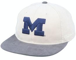 Michigan Wolverines Blockhead Deadstock Stone/Grey Snapback - Mitchell & Ness