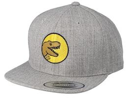 Kids T-Rex Park Grey Snapback - Kiddo Cap